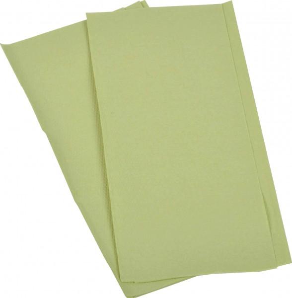 Papierhandtuch 2-lagig grün (AG-059)