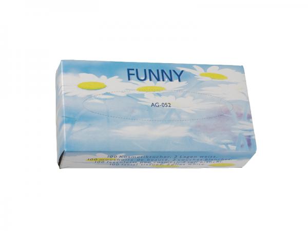 Kosmetiktücher 2-lagig, 21x20,5 cm, hochweiß, 100 Tücher pro Box (40 Boxen)