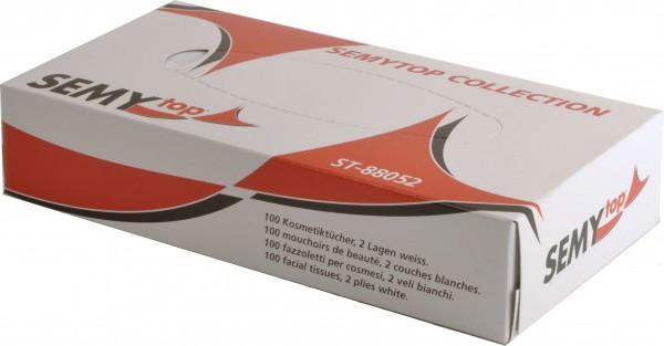 Kosmetiktücher 2-lagig, 21x20,5 cm, hochweiß, 100 Tücher pro Box (35 Boxen)